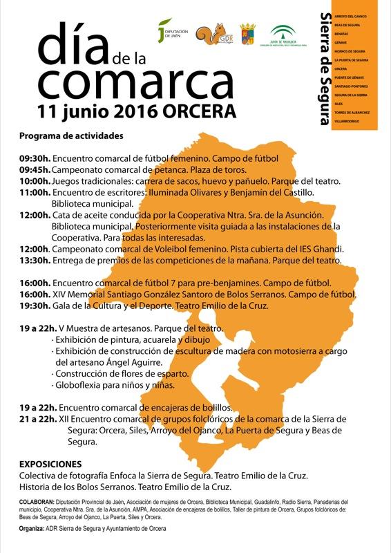 cartel dia de la comarca