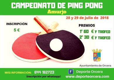 campeonato de ping pong(2)