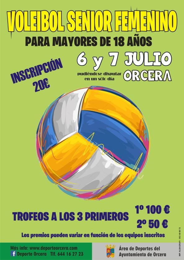 cartel voleibol femenino.